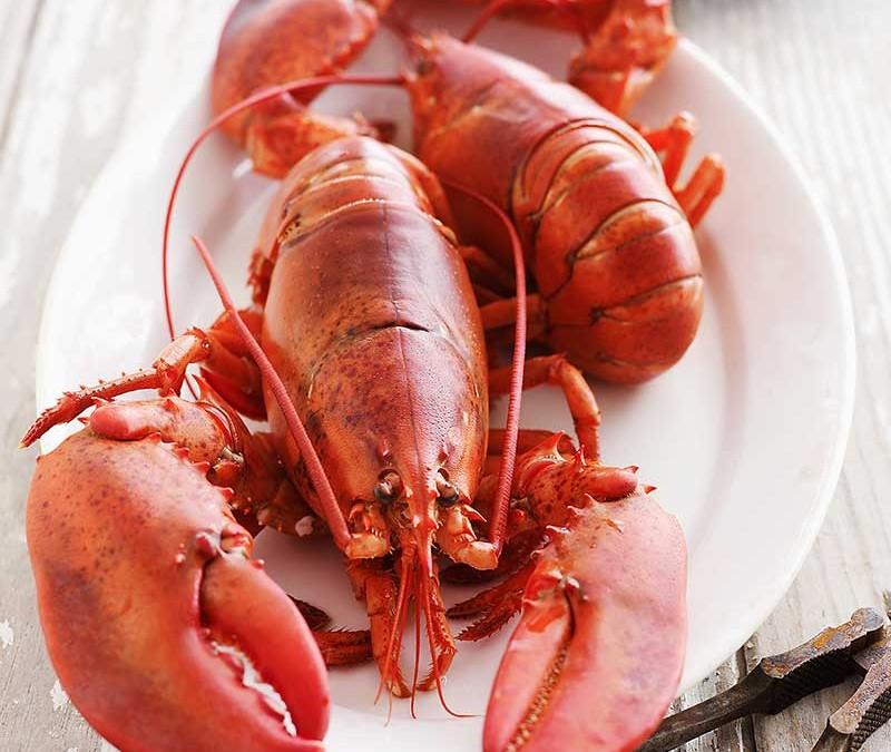 Makris Lobster & Steakhouse